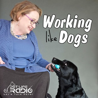 Working Like Dogs - Service Dogs and Working Dogs - Pets
