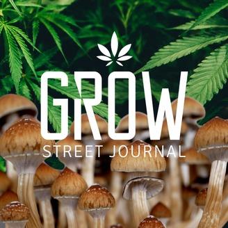 Grow Street Journal   Listen via Stitcher for Podcasts