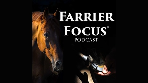 Farrier Focus Podcast - Interview with John Marino, CJF