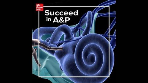 Succeed In Ap Listen Via Stitcher Radio On Demand