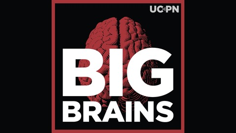 How Talk Builds Babies' Brains with Dana Suskind (Ep. 13) from Big Brains