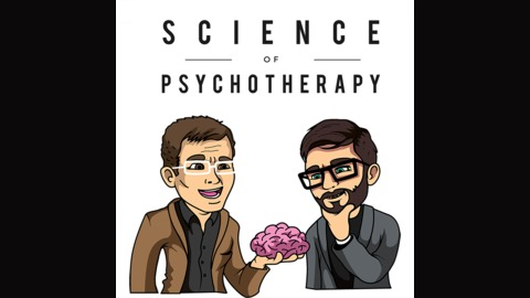 The Divided Brain from The Science of Psychotherapy