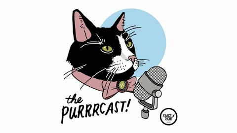 231 - The Meowndalorian from The Purrrcast