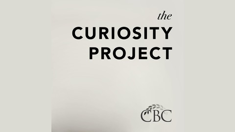010 Why I Believe in Women in Ministry Leadership with Dr. Nijay Gupta from Canby Bible College Curiosity Project